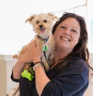 Spay/Neuter Clinic   Wisconsin Humane Society